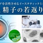 ミトコンドリアを増やし活性化させるイースタティックミネラル ー 卵子、精子へのアプローチ