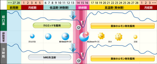 treatment3842_01