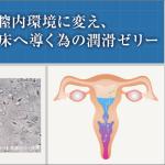 妊娠しやすい膣内環境に変え、精子を受精着床へ導く為の潤滑ゼリー